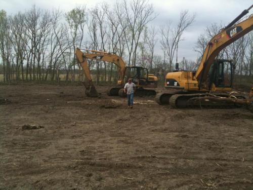 treeclearing 2